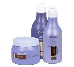 Shampooing 300 ml, après-shampooing 300 ml & masque réparateur 250 g Daily Therapy Sorali