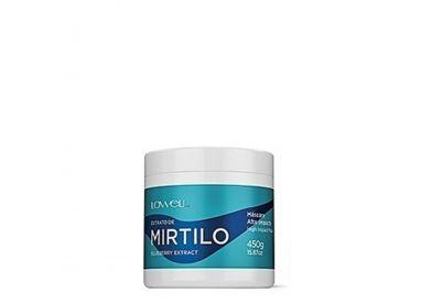 Masque Mirtilo aux extraits de myrtille Lowell 450 g