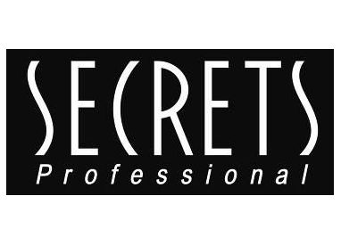 Secrets Professional